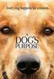 'A Dog's Purpose' Review