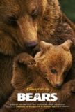'Bears' Review