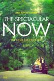 'The Spectacular Now' Review